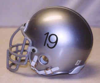 d365fe95 NFL Mini - Authentic RIDDELL/